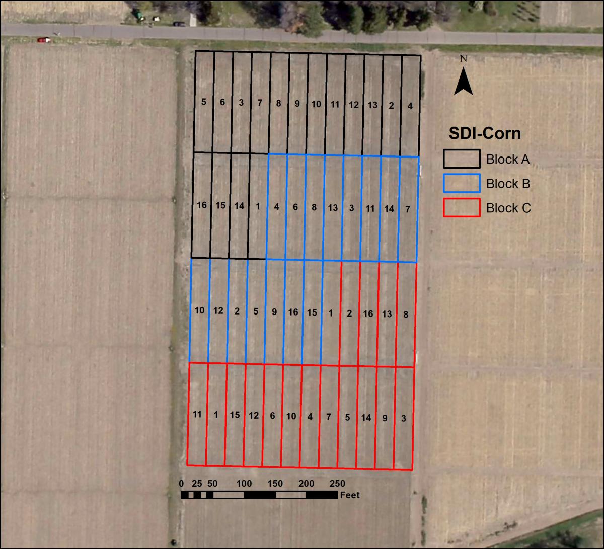 SDI Corn Competition Layout